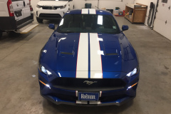 2019_Ford_Mustang_Racing_Stripes_White_1